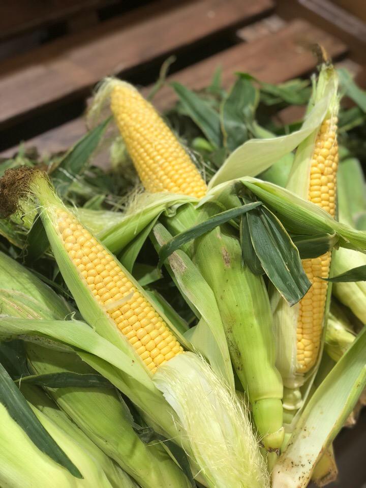 А у нас во всю раскупают кукурузу!