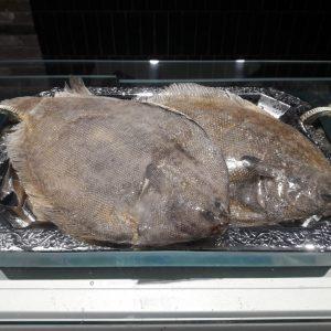 долгоозерный рыба