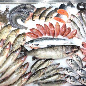 охлажденная рыба в тк долгоозерный
