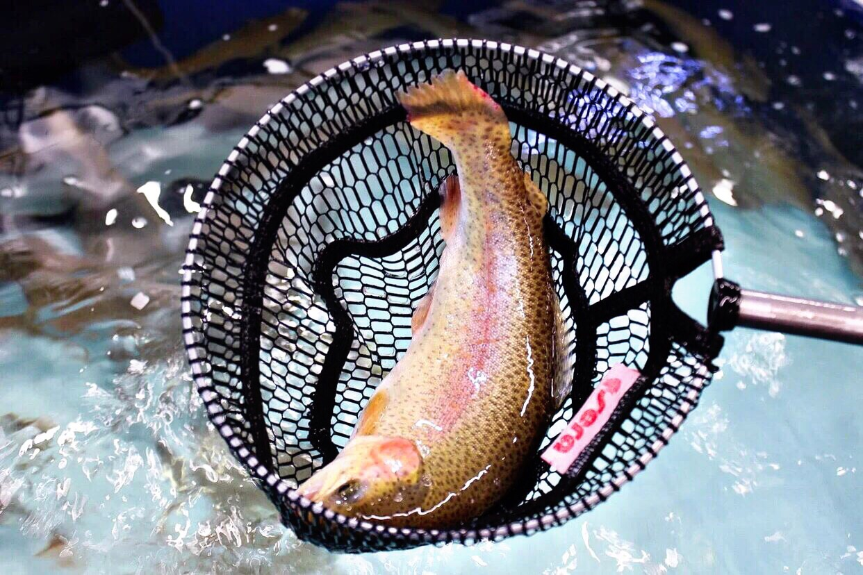 Рыбалка прямо в Долгоозёрном!